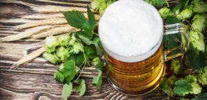 Piwo nie tylko do picia- zaskakujące zastosowania piwa