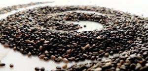 Nasiona chia – małe nasionka o ogromnej mocy